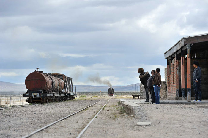 La Trochita - The Old Patagonia Express: Mamuel Choique