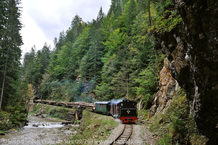 Viseu de Sus, logging train