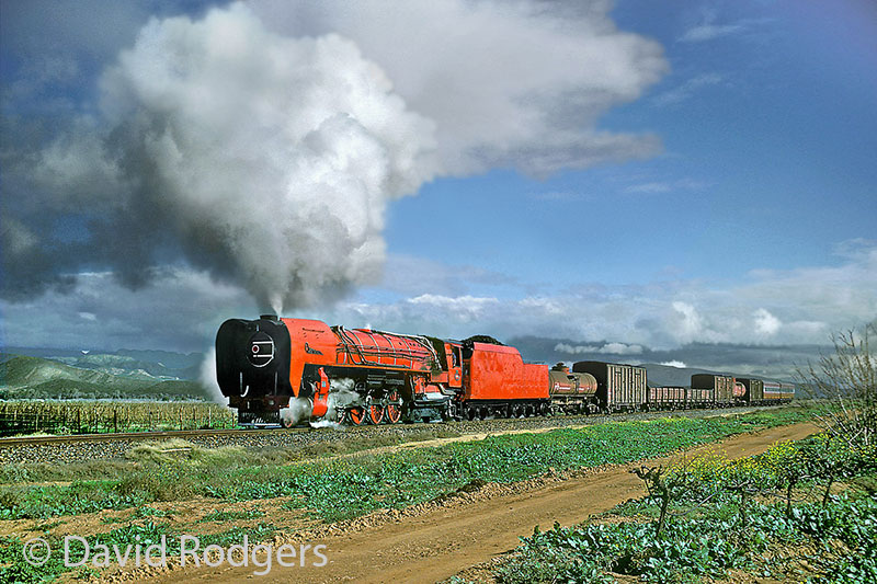 Cape Gauge Steam in South Africa, Red Devil